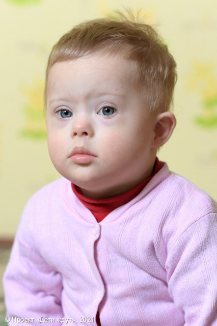 Федеральный банк данных о детях-сиротах и детях 42